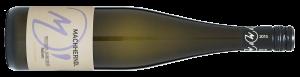 Weißer Burgunder Smaragd Kollmitz